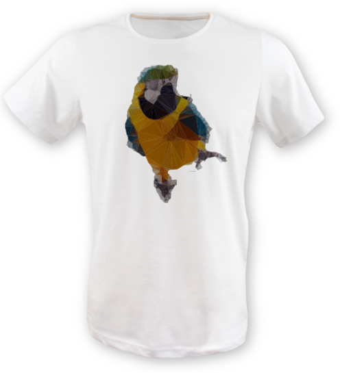 Low-poly-papagan-tisort erkek-tshirt on3